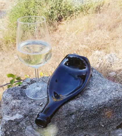 Тарелка бутылка #1